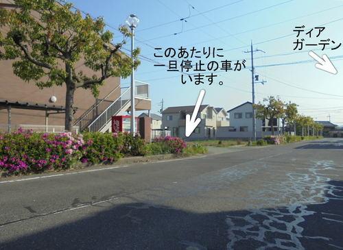 DSC08127.jpg
