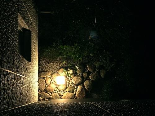 坪庭夜.jpg